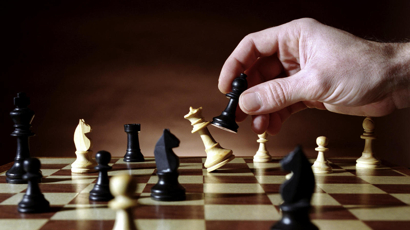 ajedrez universidad